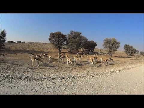 Botswana 2 1 Moorespoore