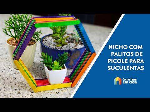 Nicho de palitos de picolé para suculentas - Artesanato DIY