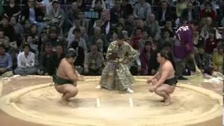 平成25年十一月場所5日目 日馬富士怒りのボディプレスw sumo 大相撲...