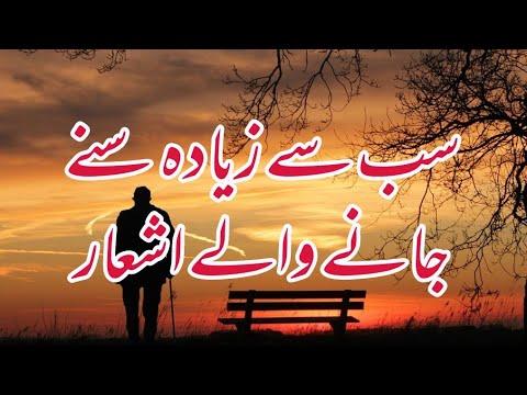 Best Two Line Sad Urdu Poetry  heart Touching Urdu Poetry #rjaqib #urdupoetry