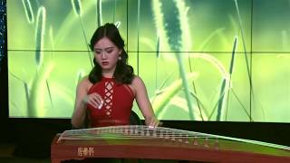 Bree Zhang - Returning Home (Sinovision Teen Talent Competition Guzheng Performance)