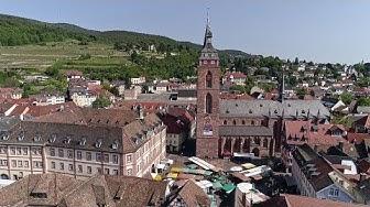 Die Stiftskirche in Neustadt – Himmel auf Erden | SWR Fernsehen