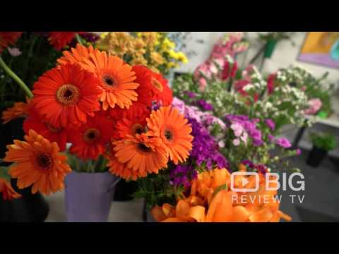 Marjorie Milner College a School in Melbourne offering courses for Hairdresser and Florist