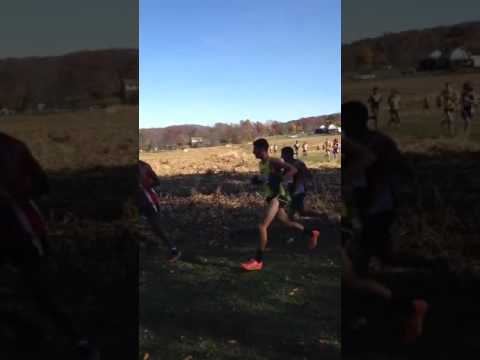 Cross Country Becomes Contact Sport as Deer Hits Runner