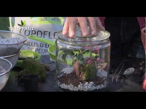 entretenir son terrarium de plantes tropicales jardinerie truffaut tv youtube. Black Bedroom Furniture Sets. Home Design Ideas