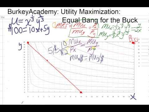microeconomic cunsumer utility