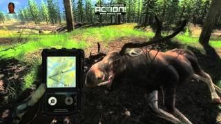 Polowanie na łosie cz.2 (łuk i sito z dupy łosia) The Hunter