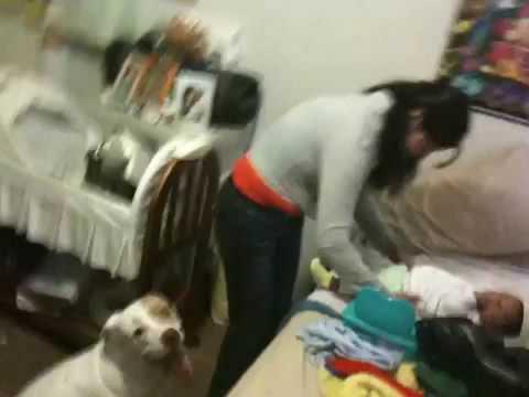 Se queda pegada con su perro