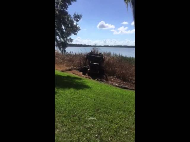 Vegetation Removal in Mt Dora