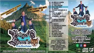 Grupo Proyecto Sierreño Mix - Puro Para Delante Paisano Album 2017