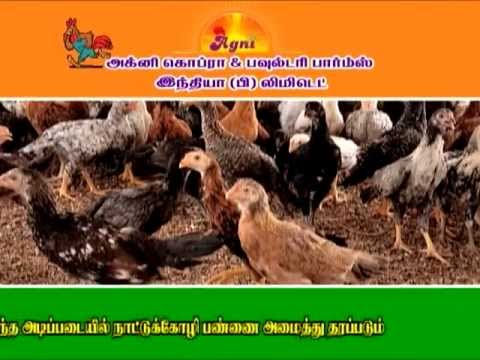 START POULTRY FARM IN YOUR AREA