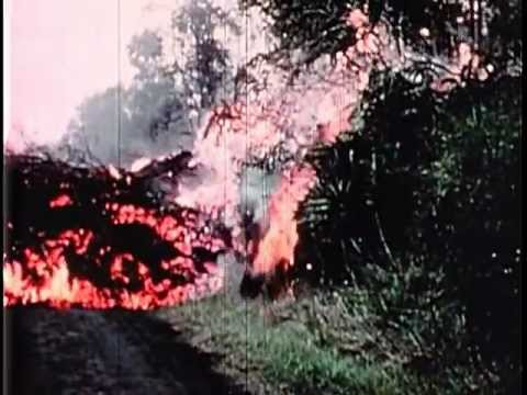 The Kilauea Volcano Eruption of 1955 - Volcanic Explosion in Hawaii