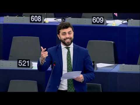 Marco Zanni: Intervento Al Parlamento Europeo. Strasburgo, 24.10.2018