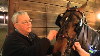 Repeat youtube video How to Harness a Horse with Harry Sebring - Part 2