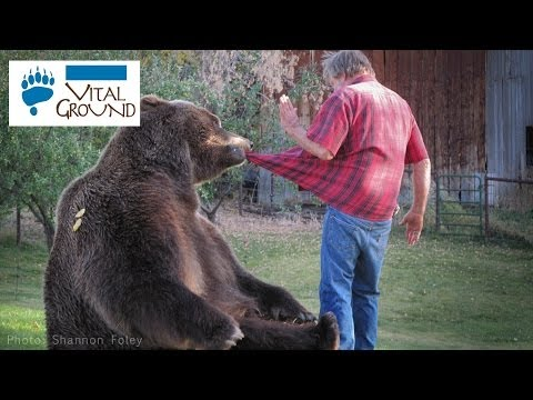 A Man with a Grizzly Bear!