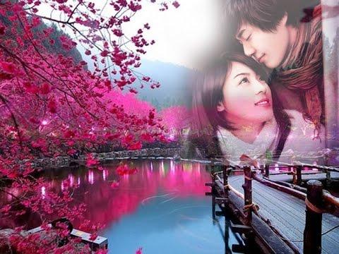 Karaoke - Yêu Em Bốn Mùa (Lê Vân Tú) - Ca sĩ Thu Trang & Xuân Phú