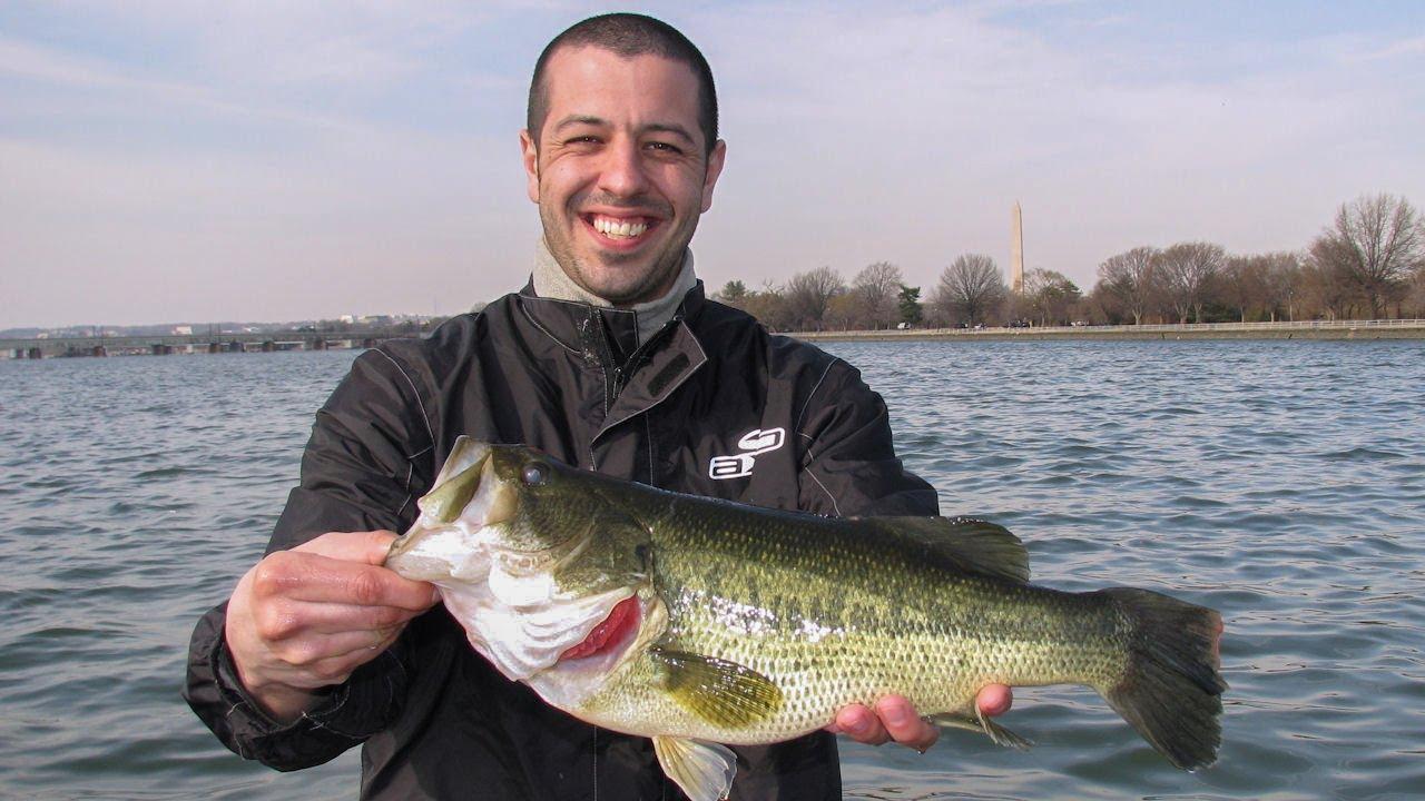 Potomac river fishing bass crappie tidal river for Potomac river fishing report