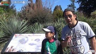 屌出香港5 EP03a - 半日遊華盛頓州Tacoma 的 Point Defiance 動物園及水族館 A: 親子環保學習好去處 - 20171123a