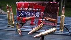 AMMO TEST:  5.56mm Hornady Superformance Match 75 gr BTHP