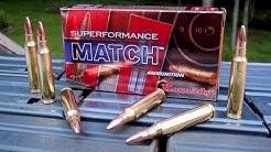 AMMO TEST:  5.56mm Hornady Superformance Match 75 gr BTHP