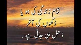 Anmol Moti Inspirational Urdu Quotes for Life   Laila Ayat Ahmad