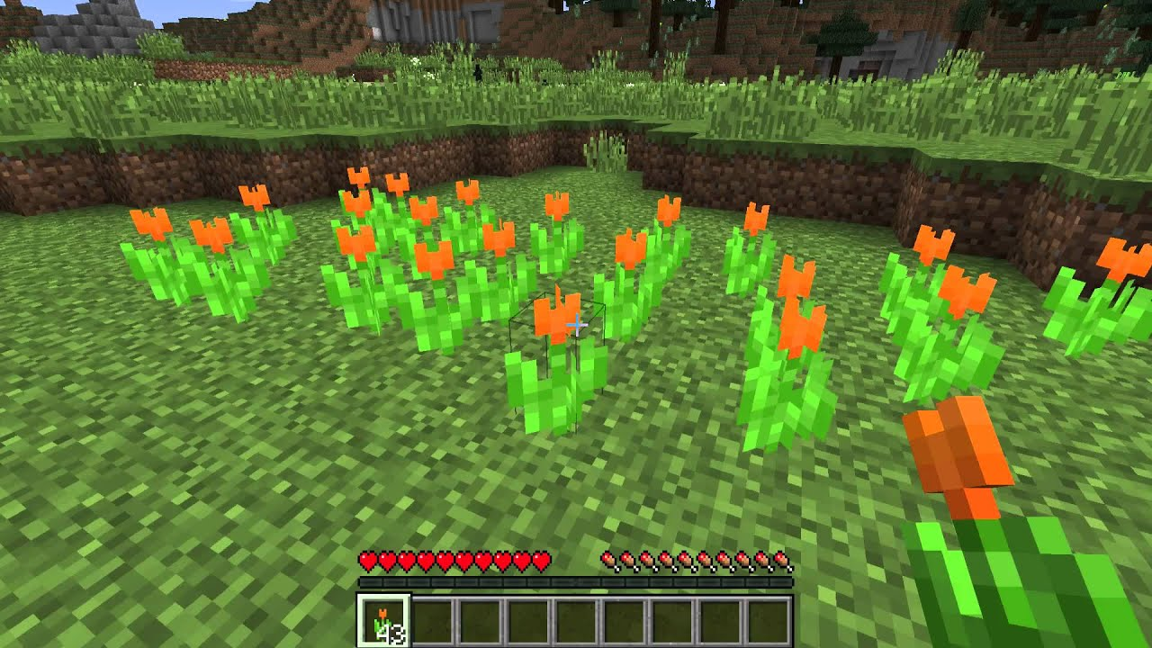 What are Orange Tulips , Minecraft Flowers