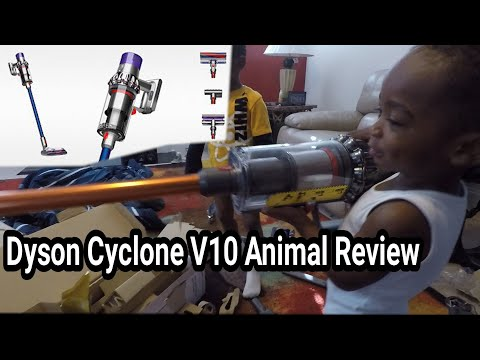 Dyson Cyclone v10 animal Review with my TOddler assistants.