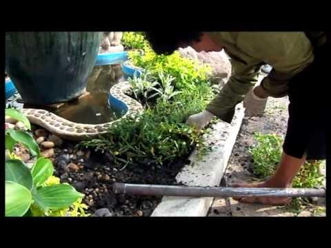 Ladda Garden  Design Part 2.flv