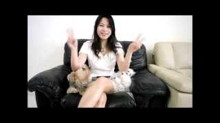How to train 4 Dogs for Toilet Training