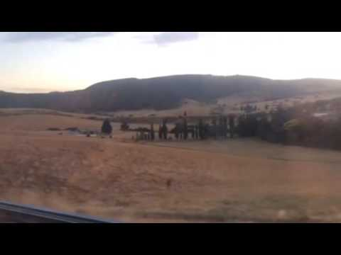 Travel Series Video #14 Bathurst to Lithgow (on sunrise)