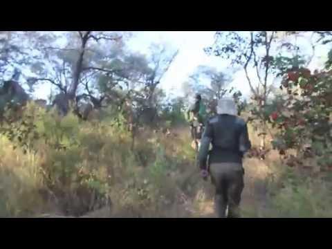 Adventures in Matobo, Zimbabwe (Pt. I)