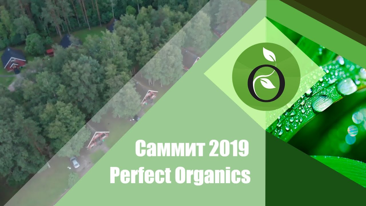 Саммит 2019, день 1 // Perfect Organics