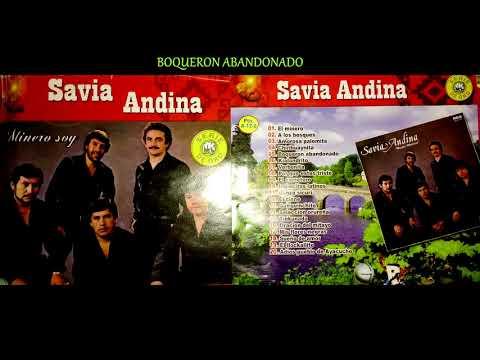 SAVIA ANDINA - Boquerón Abandonado