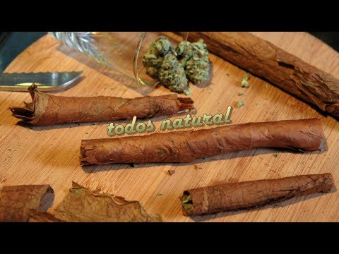 Todo Natural (Blunt Rolling with a Habana Montecristo Hand-Rolled Cuban Cigar)