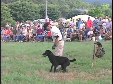 2005 SUPER RETRIEVER SERIES CROWN CHAMPIONSHIP