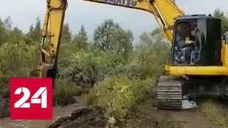 Дальневосточный гектар: селфи и видеоблоги - Россия 24