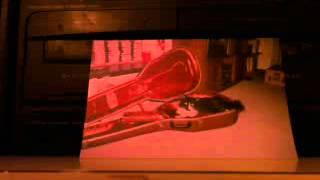 JOHNNY B. GOODE/WORKING CLASS HERO/COTTON FIELDS by Robin Olsen.