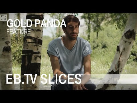 GOLD PANDA (Slices Feature)