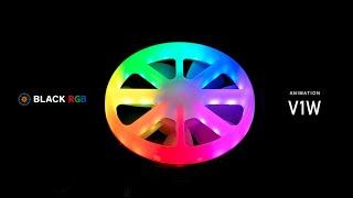 BLACK RGB Light Modes / V1W