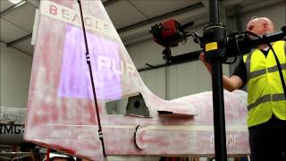 Beagle Pup Prototype - 3d Optical Scanning
