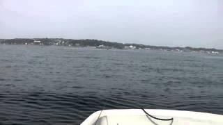 金田漁港浜千鳥ボートカレイ釣り20140416