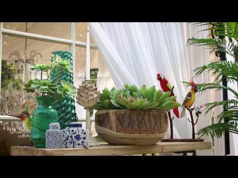 EDG Enzo De Gasperi - Tropical Collection 2017 Chapter 02