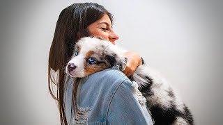 ela encontrou o Duke pela primeira vez... ( emocionante ) ‹ NeagleHouse ›