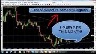 Free Forex Training Video - Forex Trading for Beginners and Pro's