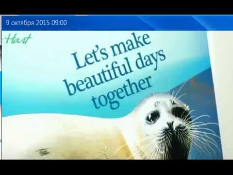 Russian Astrakhan 24 TV Item about Caspian Seal project