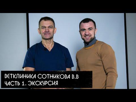Ветклиника Сотникова Владимира Валерьевича. Часть 1. Экскурсия