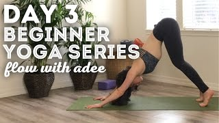 DAY 3/30 Beginner Yoga Series | Intro to Sun Salutations