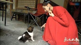 """幕后花絮之迪丽热巴更喜欢猫还是狗?反正刘芮麟痴迷""""玄璜""""《烈火如歌》【梦幻星生园出品 欢迎订阅】"""
