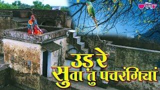 Ud Re Suwa Tu Pachrangiya   New Rajasthani Song 2019   Mamta Singh