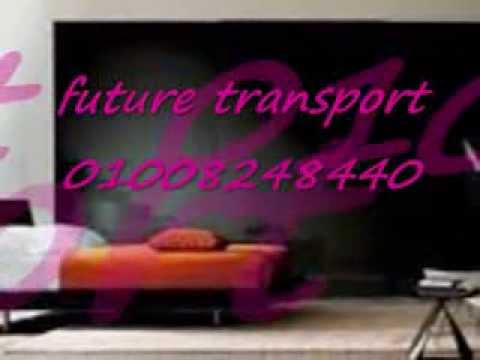 future transport for Furniture moving company
